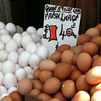 Eggs at Ridley Road market